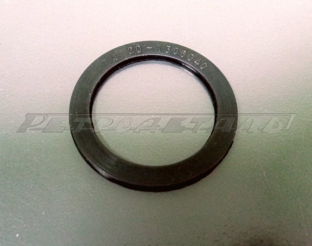 Gasket thermostat GAZ