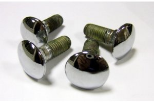 Chrome bumper bolts