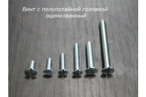 Screw with half-head with straight slot