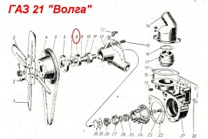 Bearings of the water pump GAZ, RAF and UAZ
